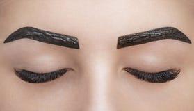 Le maquilleur applique le henné de peinture sur des sourcils dans un salon de beauté image libre de droits