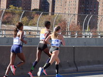 Le marathon 2016 de TCS New York City 199 Image libre de droits