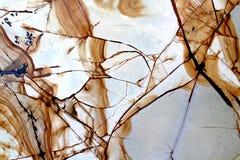 Le marbre donne au blanc et au brun une consistance rugueuse Images libres de droits