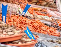 Le marché de fruits de mer marche en crabe le bleu orange de crevettes roses de coquille photo stock