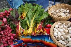 Le marché de l'agriculteur/betteraves, chou frisé, ail photographie stock libre de droits