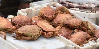 Le marché de poissons photos stock