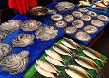 Le marché des poissons, Fouineur-est Image stock