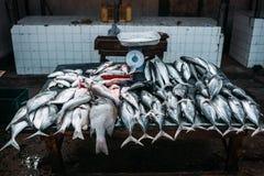 Le marché pour les poissons de mer Marché en plein air photos stock
