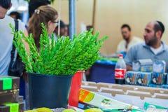 Le marché de vacances à Jérusalem Images stock