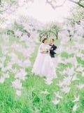 Le marié étreint le dos de jeune mariée derrière les cygnes de papier en parc Photographie stock libre de droits