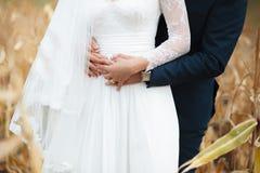 Le marié étreint la jeune mariée sur le champ de maïs Photos libres de droits