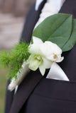 Le marié Photo libre de droits