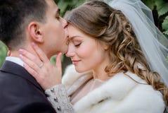 Le marié de brune embrasse le bride& x27 ; front de s tendrement photographie stock