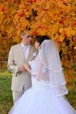Le marié de jeune mariée tenant des mains sous la sorbe d'automne Image stock