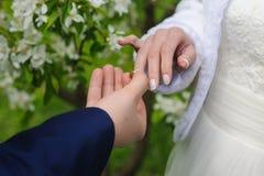Le marié donne une bague de fiançailles à sa jeune mariée Images libres de droits