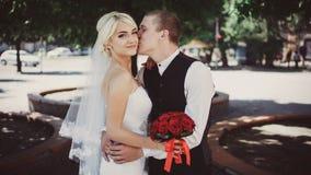 Le marié embrasse et embrasse la jeune mariée sur la joue photos libres de droits