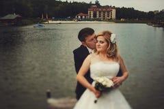 Le marié embrasse une jeune mariée l'étreignant par derrière tout en se tenant sur t image stock