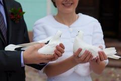 Le marié et la jeune mariée avec des pigeons dans des mains Photos stock
