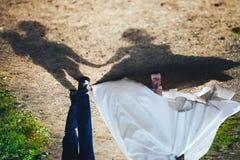Le marié la jeune mariée les ombres Photos libres de droits