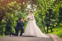 Le marié vers le bas sur un genou et baisers la main de la jeune mariée en parc Images libres de droits