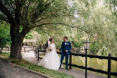 Le mari mène son épouse par la main en parc avec un étang, et montre de beaux endroits La jeune mariée dans une robe de mariage Photographie stock