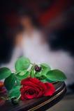 Le mariage rouge a monté sur des milieux d'une tache floue avec la jeune mariée Photos libres de droits