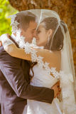 Le mariage a tiré de la mariée et du marié en stationnement Image stock