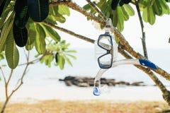 Le masque et la prise d'air bleus accroche sur une branche d'arbre contre le contexte de la mer et de la plage Photos libres de droits