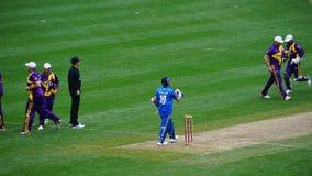Le match de 2015 Tout-étoiles de cricket à New York Photo stock