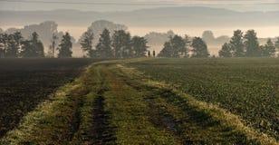 Le matin brumeux, deux cavaliers montent le long du chemin entre les champs Images libres de droits