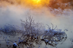 Le matin d'hiver Photo stock