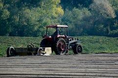 Le matin du fermier Images libres de droits