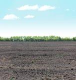 Le mattonelle orizzontali senza cuciture di terra ed il cielo abbelliscono Fotografie Stock