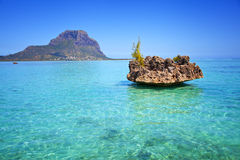 Le Mauritius fotografia stock libera da diritti