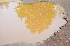 Le mauvais a asphalté la route avec un grand nid de poule rempli avec de l'eau Assiette de la route détruite dangereuse images libres de droits