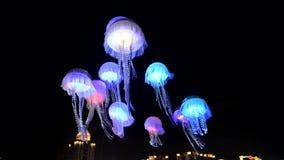 Le meduse hanno condotto l'illuminazione stock footage