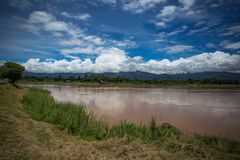 Le Mekong, ciel et herbe verte image stock
