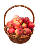 Le mele in cestino hanno isolato Fotografie Stock