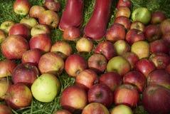 Le mele di caduta degli stivali dei bambini in rosso si trova nell'erba Fotografia Stock