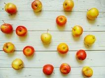le mele gialle e rosse sono sui bordi bianchi Immagine Stock Libera da Diritti