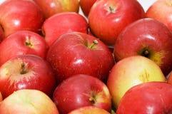 Le mele rosse hanno organizzato sulle righe al servizio immagini stock libere da diritti