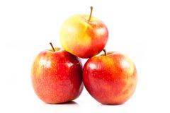 Le mele rosse isolate sulla mela bianca del fondo fruttifica Immagini Stock Libere da Diritti