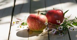 Le mele rosse si trovano su un fondo di legno leggero Fotografia Stock Libera da Diritti