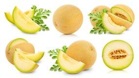 Le melon porte des fruits collection Photographie stock