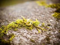 Le mensonge d'or d'anneaux sur la mousse photographie stock