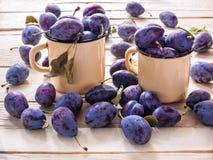 Le mensonge de prune dans des tasses de bidon et sur un fond en bois photo stock