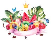 Le menu exotique d'aquarelle porte des fruits carte illustration de vecteur