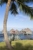 Le Meridien塔希提岛旅馆, Pape'ete,塔希提岛,法属玻里尼西亚 免版税库存图片
