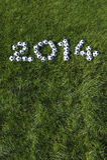 Le message pour 2014 a fait avec des ballons de football du football sur l'herbe Photographie stock