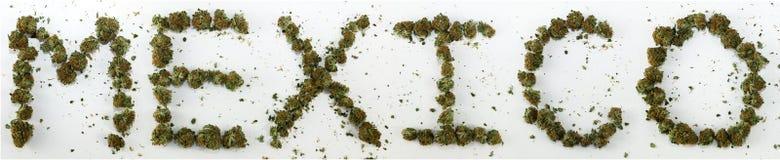 Le Mexique a orthographié avec la marijuana Photographie stock