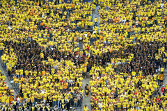 Le Michigan Wolverines M Photo libre de droits