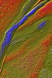 Le micrographe 3D digitalement changé abstrait de la mousse part Photo libre de droits