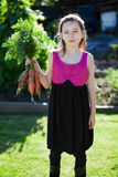 Le mie carote Immagine Stock
