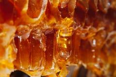 Le miel ambre en nids d'abeilles coule en bas lentement du jaune Photographie stock